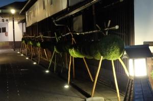 杉玉2014夜景-2