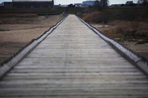 上津屋橋3